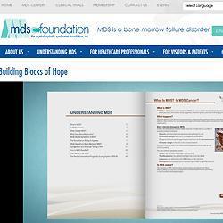 Building Blocks of Hope – MDS Foundation