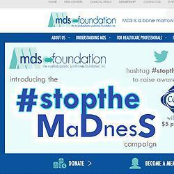 The Myelodysplastic Syndromes Foundation