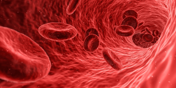 Trial to test existing drugs against rare blood cancer